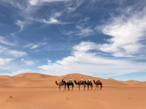 Morocco trekking desert